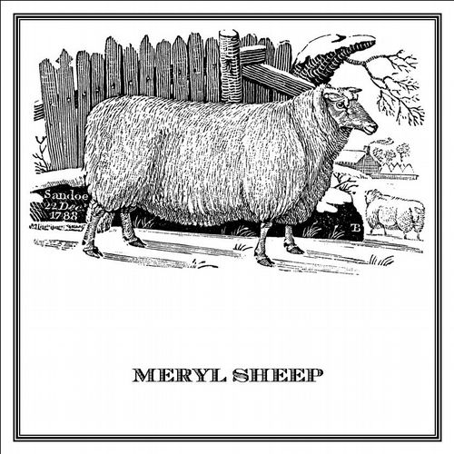 Zoomorphic' Greeting Card Meryl Sheep